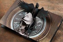 raven-pop-up-ill